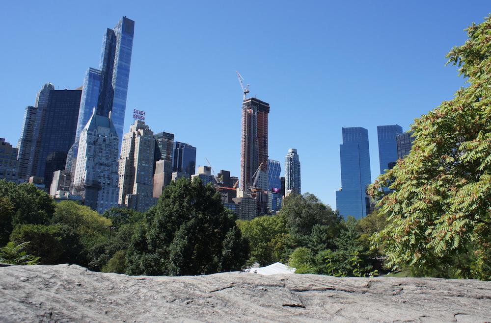 NYC Photo Safari Central Park